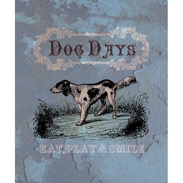 Dog Days Navy