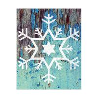 David's Snowflake - Freeze