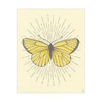 Burst Butterfly V