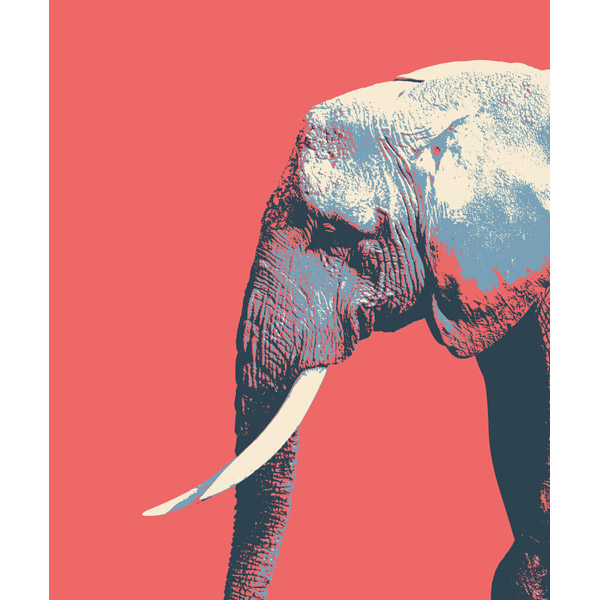 Elephant to the Right Red