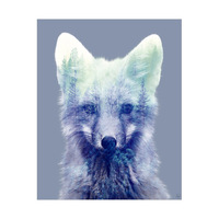 Blue Forest Fox