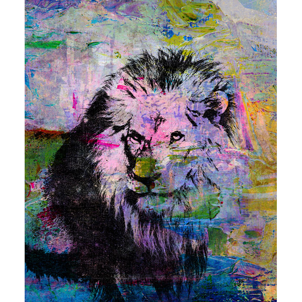 Abstract Paint Black Lion