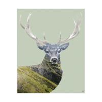Mountain Elk - Green
